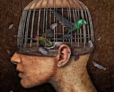 Cage tete 1